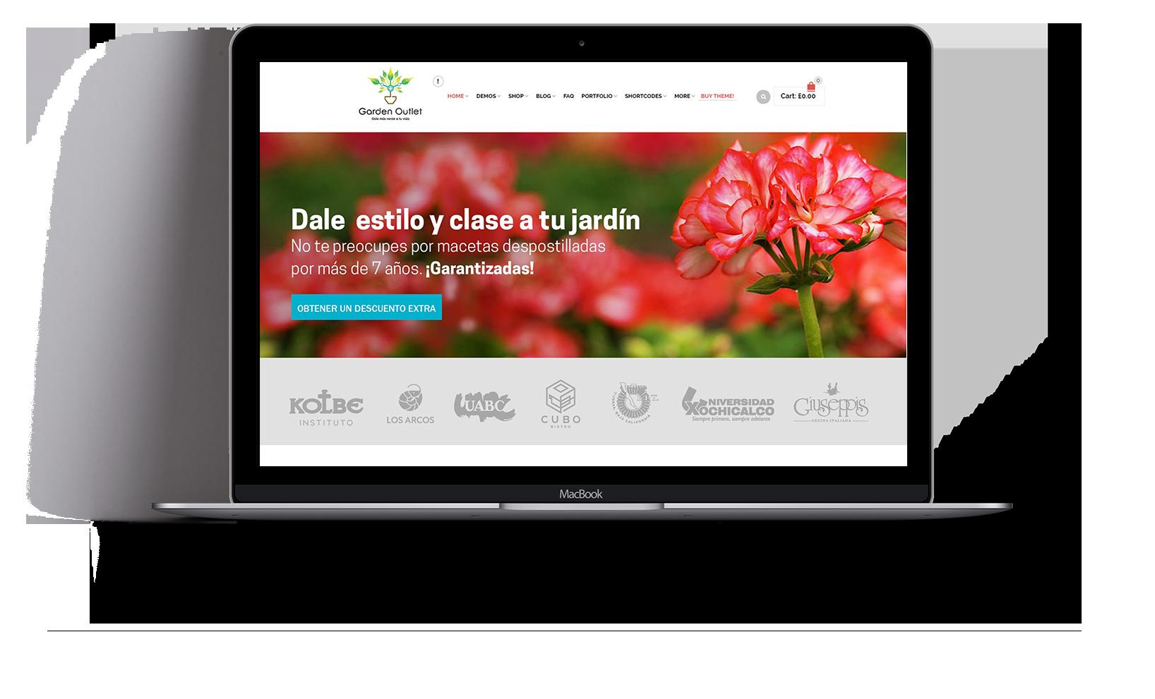 paginas-web-tijuana
